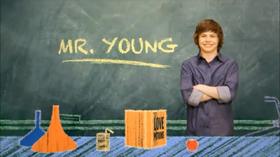 IL PROFESSOR YOUNG RECENSIONE